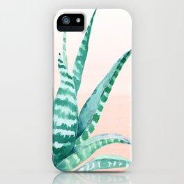 Desert Succulent Aloe Vera iPhone Case