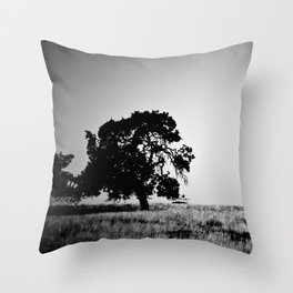Field Of Empty Dreams Throw Pillow