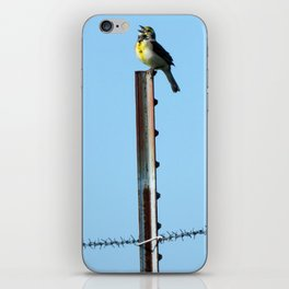 Beauty and the Barbwire iPhone Skin
