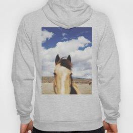 Cloudy Horse Head Hoody