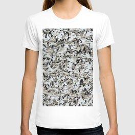 Flightless Birds T-shirt
