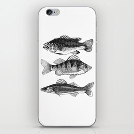 The Fish Of Nopiming iPhone Skin