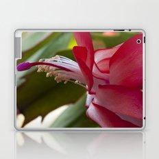 Christmas Cactus Laptop & iPad Skin