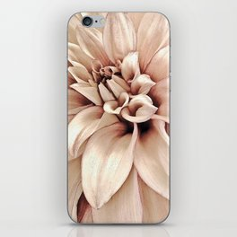 Golden Pink Dahlia, Forever Thine iPhone Skin
