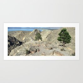 Panum & Mono Panoramic Art Print