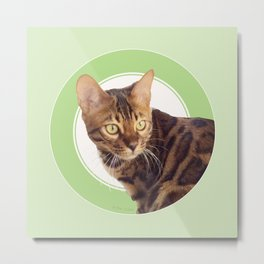 Boris the cat - Boris le chat Metal Print