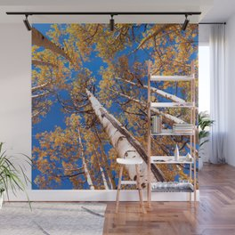 Aspen Trees Against The Sky In Crested Butte, Colorado Wall Mural
