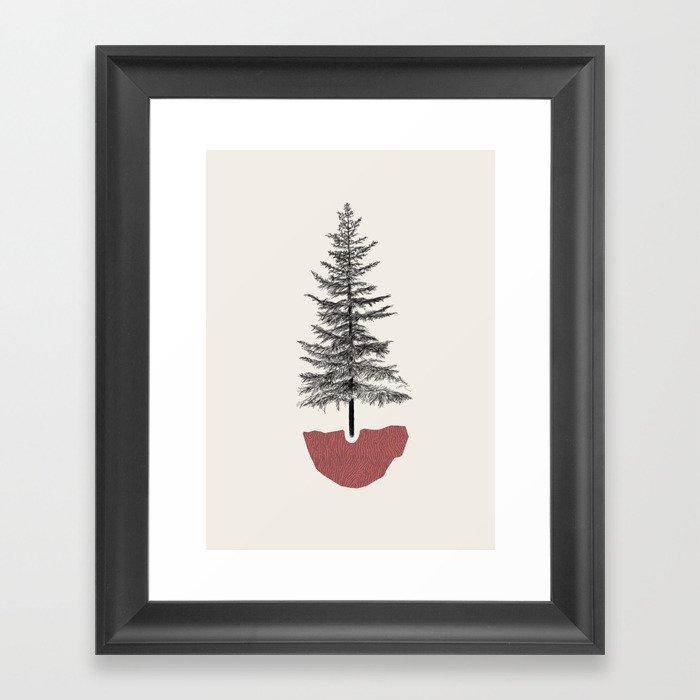 Fir Pine Gerahmter Kunstdruck