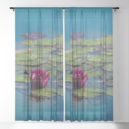 Two water lilies Sheer Curtain