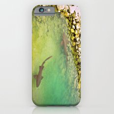 Sharks Slim Case iPhone 6s