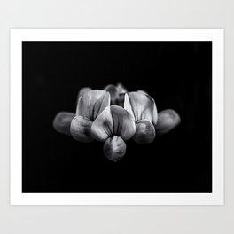 Backyard Flowers In Black And White 5 Art Print