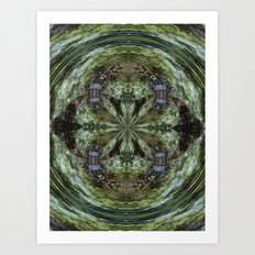 Reflection In A Creek # 2 Art Print