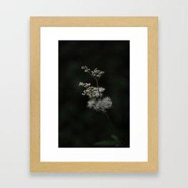 Summer Night Dream Framed Art Print