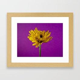 Grape and Lemon Framed Art Print