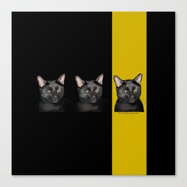 Three Black Cats with Black and Yellow Background Canvas Print