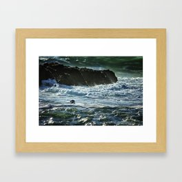 I Spy A Seal Framed Art Print