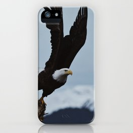 Alaskan Bald Eagle iPhone Case