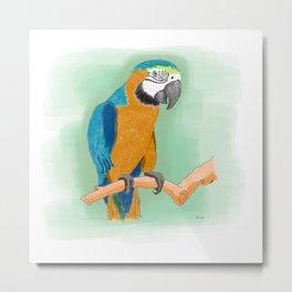 Yellow Blue Macaw Bird Metal Print