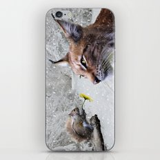 Lynx and Squirrel iPhone & iPod Skin