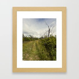 a path in the highlands Framed Art Print