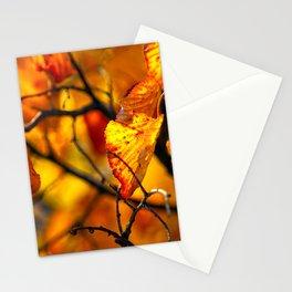 Beautiful orange linden tree leaves Stationery Cards