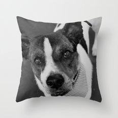 hello doggie Throw Pillow