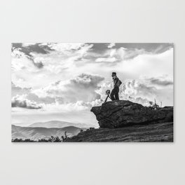roan Canvas Print