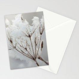 Winter macro Stationery Cards