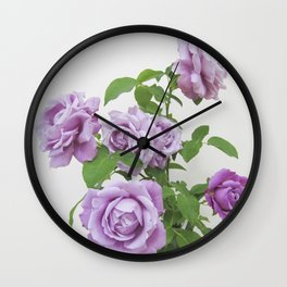 winter rose . image Wall Clock