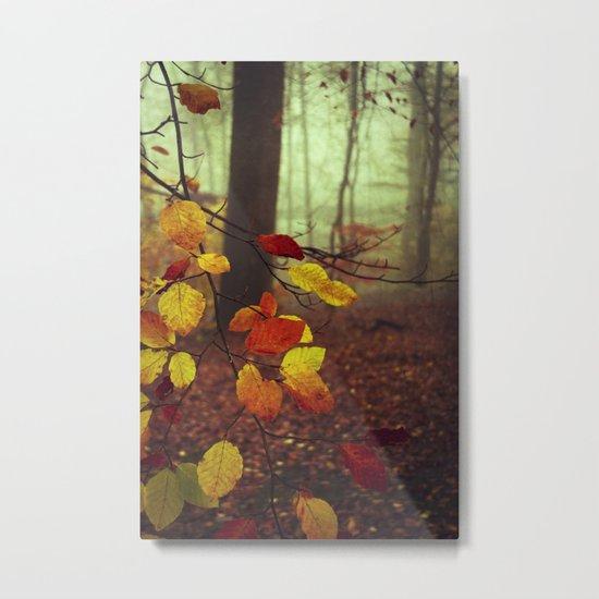 Leaves in Autumn Metal Print