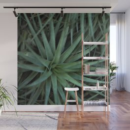 Fireworks of Green Wall Mural