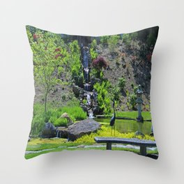 The Passage of Time Throw Pillow