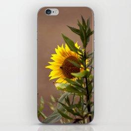 The sunflower iPhone Skin