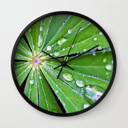 Raindrops on a Lupin Leaf Wall Clock
