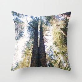 Tall Trees Throw Pillow