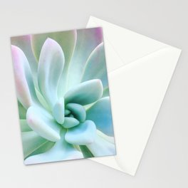 Soft Succulent Stationery Cards