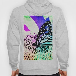 Beautiful Butterfly Sitting on a Flower with Colorful Background Hoody