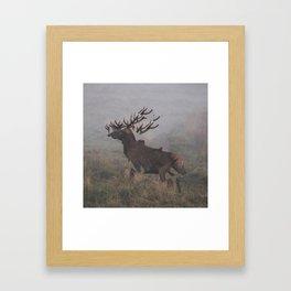 Deer Interrupted Framed Art Print
