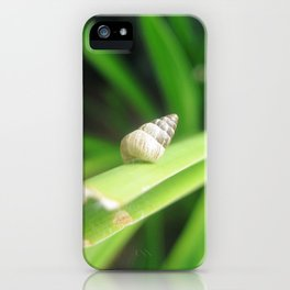 Solo shell iPhone Case