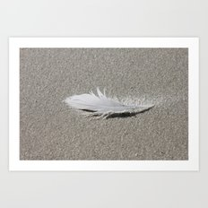 Feather in the Sand Art Print