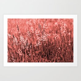 CORAL OCEAN of GRASSES Art Print