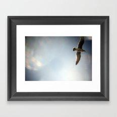 sky/gull Framed Art Print