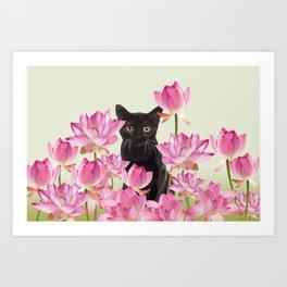 Lotus Flower Blossoms Black Cat Art Print