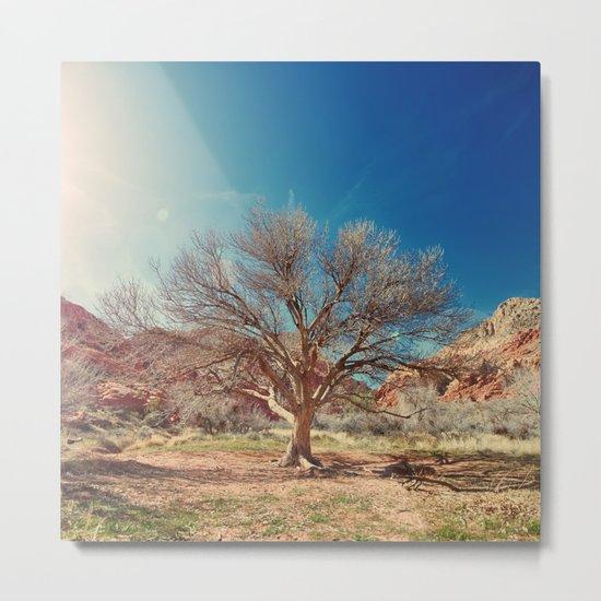 Sun desert tree Metal Print
