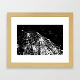 Your pain is the breaking of the shell that encloses your understanding~Khalil Gibran Framed Art Print