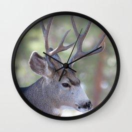 Watercolor Deer, Mule 04, RMNP, Concerning Thoughts Wall Clock