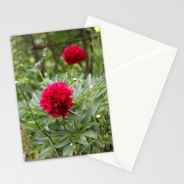 Red Peonies in Bloom Stationery Cards