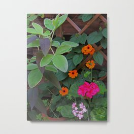 Trellised Garden Metal Print
