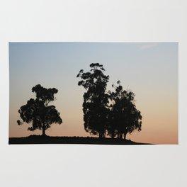 Eucalyptus trees at sunset Rug
