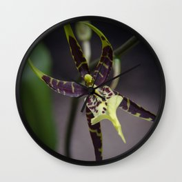 quietly gorgeous Wall Clock